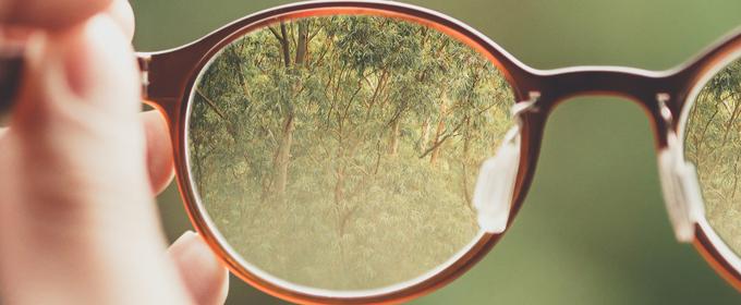 bril in bos