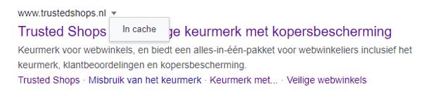 google-search-screenshot05